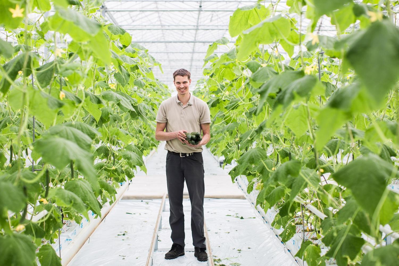 Komkommerteler Kees Hendriks