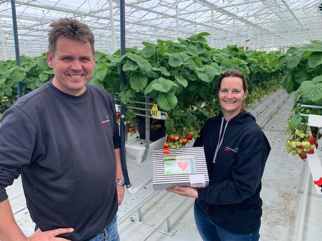 Eerste aardbeien uit nieuwe, duurzame kas van VOF de Goeije Kroon geleverd